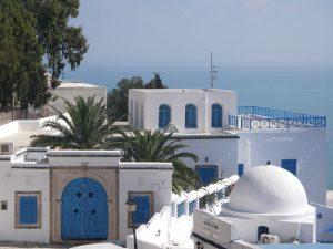 チュニジアンブルーと呼ばれる白に映える青